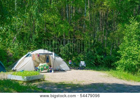 Campground In Summer Forest