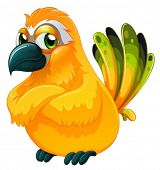 stock photo of angry bird  - Illustration of an angry bird on a white background - JPG