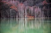 picture of taint  - Contaminated lake water from a copper mine - JPG