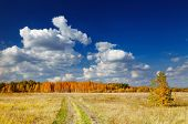pic of hayfield  - Autumn landscape with forest and blue sky - JPG