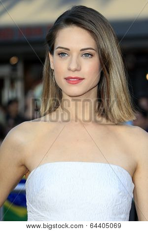 LOS ANGELES - APR 28:  Lyndsy Fonseca at the