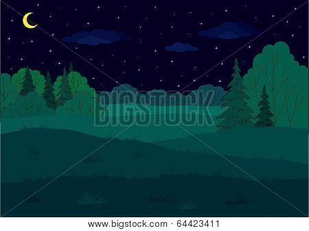 Landscape, summer forest glade poster