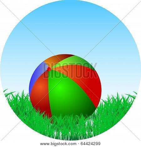 Ball Is In The Green Grass
