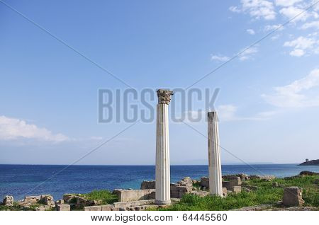 Archeological Site Of ??tharros