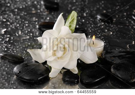 gardenia flower and candle on pebbles