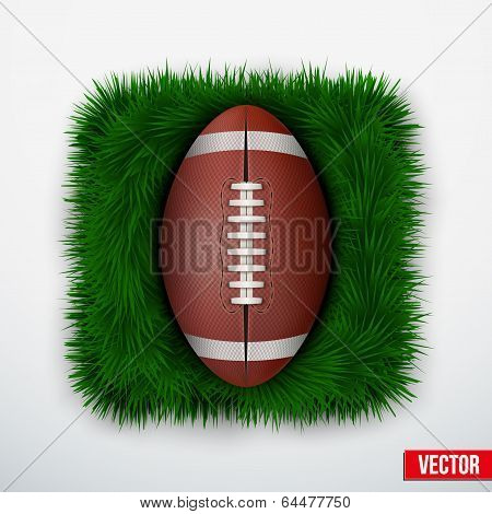 Icon american football ball in green grass. Vector.