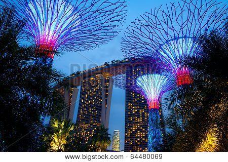 Magic Gardens Singapore