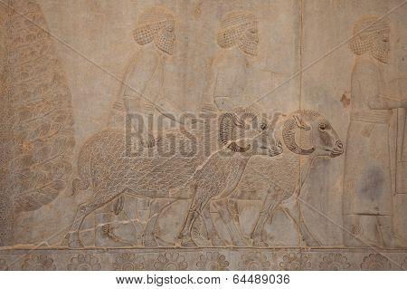 ruins of Persepolis, Iran