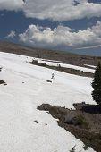 Summer Skiing On Mt Hood poster