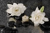 picture of gardenia  - Spa still life with two gardenia flower and candle on pebbles  - JPG