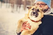 picture of sheep-dog  - Dog Shepherd Puppy and Woman hugging Outdoor Lifestyle and Friendship concept - JPG