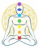 stock photo of tantra  - Meditating man with the seven main chakras - JPG