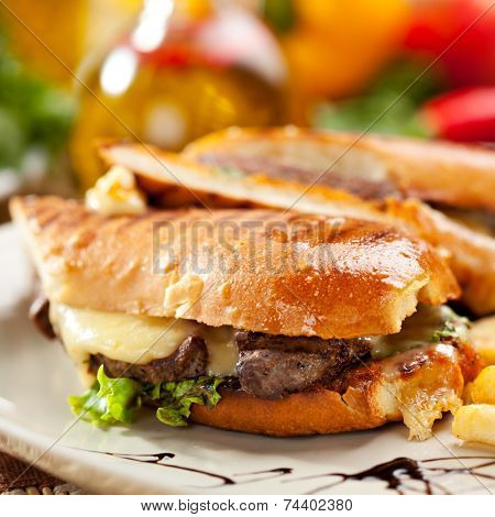 Panini - Italian Sandwich with French Fries and Vegetables