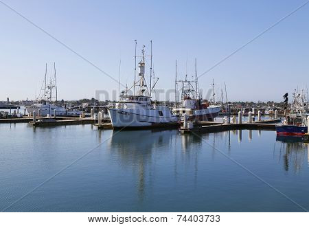 Famous San Diego Tuna fishing boats in San Diego Harbor