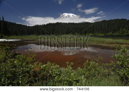 Mt. Ranier & Reflection