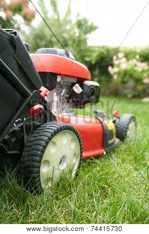 Red Lawn mower cutting grass. Gardening concept background