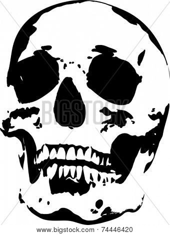 illustration with skull isolated on white background