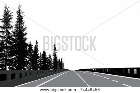 illustration with empty road with firs on roadside