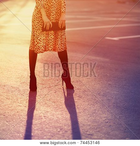 Stylish Fashion Concept, Elegant Pretty Woman In Leopard Dress With Clutch Posing Outdoors On Sunset