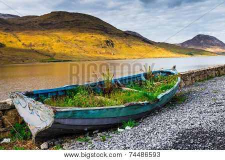 Overgrown Rowboat At The Shore Of Kylemore Lough