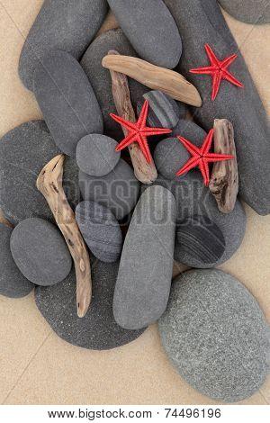 Starfish sea shells, driftwood and pebbles on a sand beach.