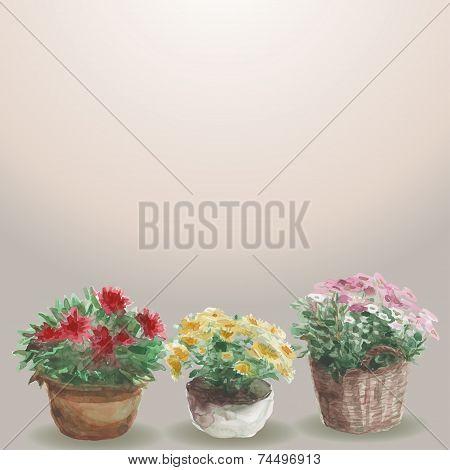 Yellow, Pink, Red Flower In A Flower Pot,  Beige Background. Wat