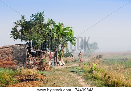Indian Rural Woman Walking In The Mist