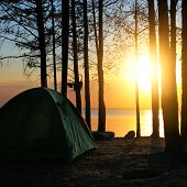 picture of backwoods  - Tent in the Forest at the Seaside on Sunset Background - JPG