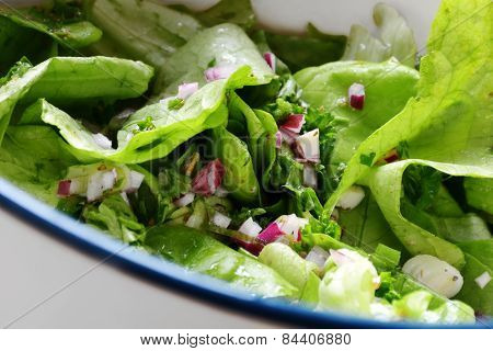 Green Lettuce Salad With Red Onions