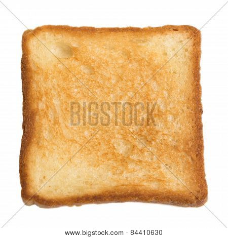Toasted Slice Of Bread