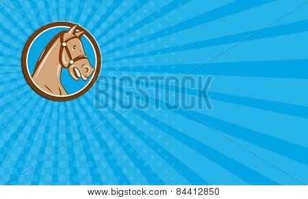 Business Card Horse Head Bridle Circle Cartoon