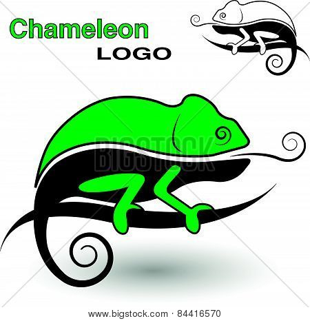 Chameleon logo. Black and white and color version.
