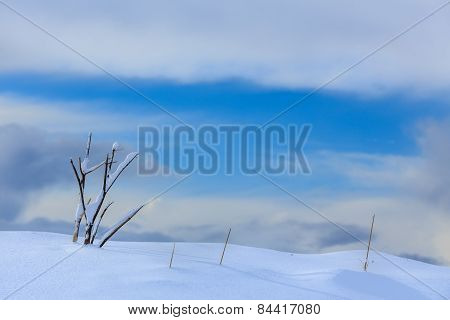 Snow and sky background