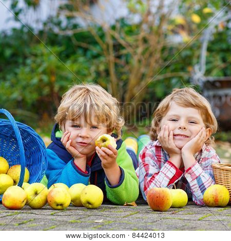 Two Adorable Little Sibling Kids Eating Apples In Home's Garden, Outdoors