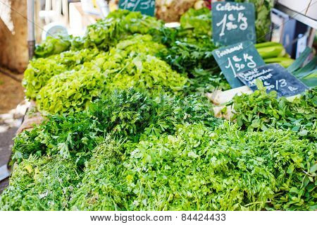 Organic Fresh Parsley From Mediterranean Farmers Market In Provence