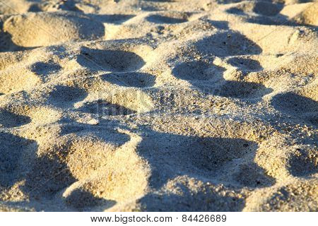 Texture   Footstep  In Kho Samui    Stone Abstract