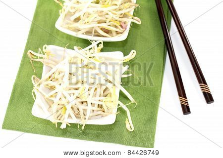 Bright Mung Bean Sprouts