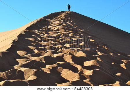 Dune Desert Namibia