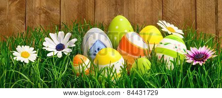 Easter Eggs And Flowers In Grass