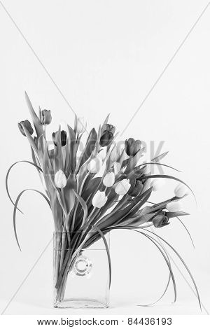 Tulips Arranged In Glass Vase