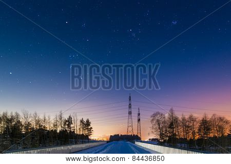 illuminated horizon at winter with trees and power suppy poles