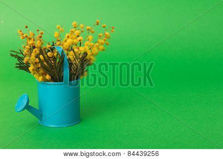 Spring Flowers In Watering Pot