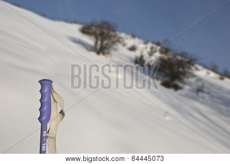 The ski pole in the snow