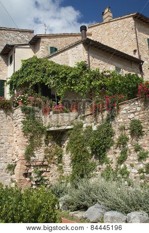 Old Stone House With Plants And Flowers
