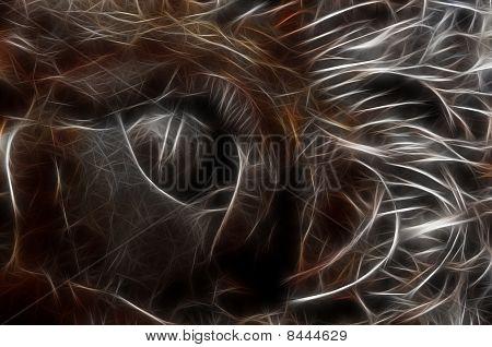 eye of a beast