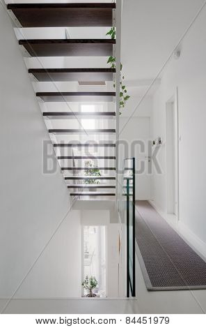 House Hall Stairs And Glass Balustrade