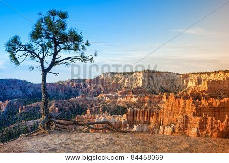 Line Of Beautiful Pinnacles Of Bryce Canyon National Park, Utah, Usa
