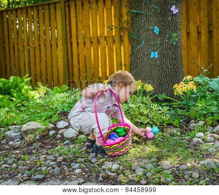 A Little Boy Finds Easter Eggs