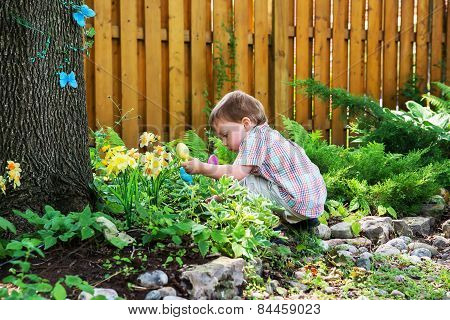 Little Boy Looking For Easter Eggs