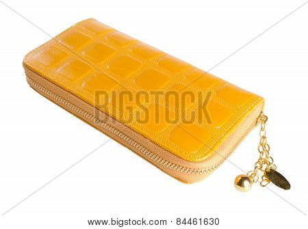Wallet. Woman Wallet On Background. Woman Wallet On A Background.